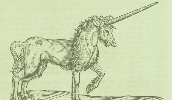 An old sketch of a unicorn.